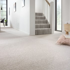 Soft Noble Actionback Carpet
